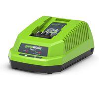 Greenworks Acculader met VDE 40 V 2 A