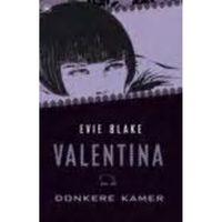 Boek Valentina En De Donkere Kamer