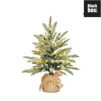 Black Box Trees - Brewer Kerstboom Led Werk Op Batterijen