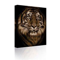 Sound Art Canvas + Bluetooth Speaker Tiger's Face