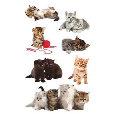 Avery Av-55971 Papieretiket Z-design Kids Pakje A 3 Vel Katten Foto