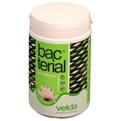 Velda Vijverbalans bacterie 1.000ml 122636