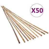 vidaXL Tuinstokken 50 st 120 cm bamboe
